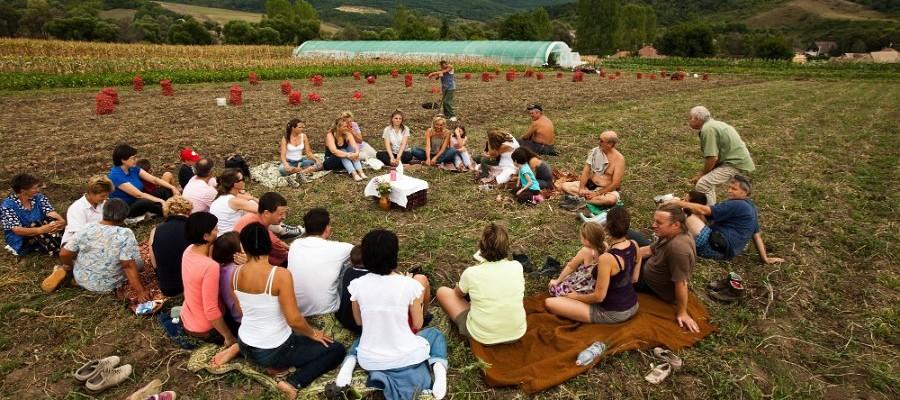 Urban News From Hungary Okotarsulas A