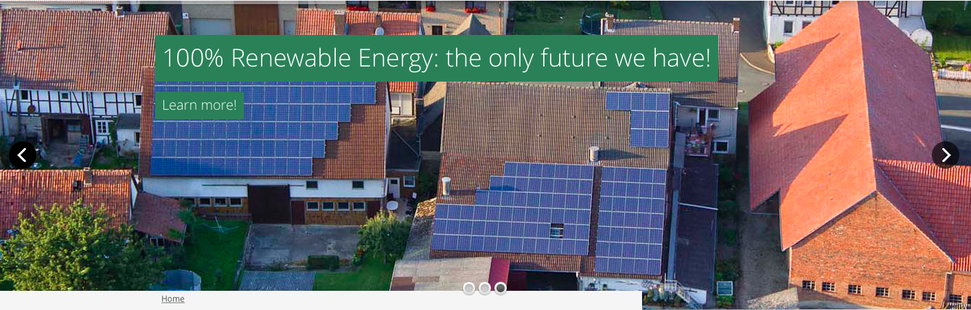 renewable energy the only future we have