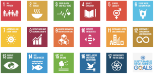 Sustainable_development_goals