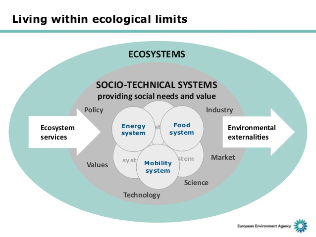 Ecosystems and socio-technical systems.